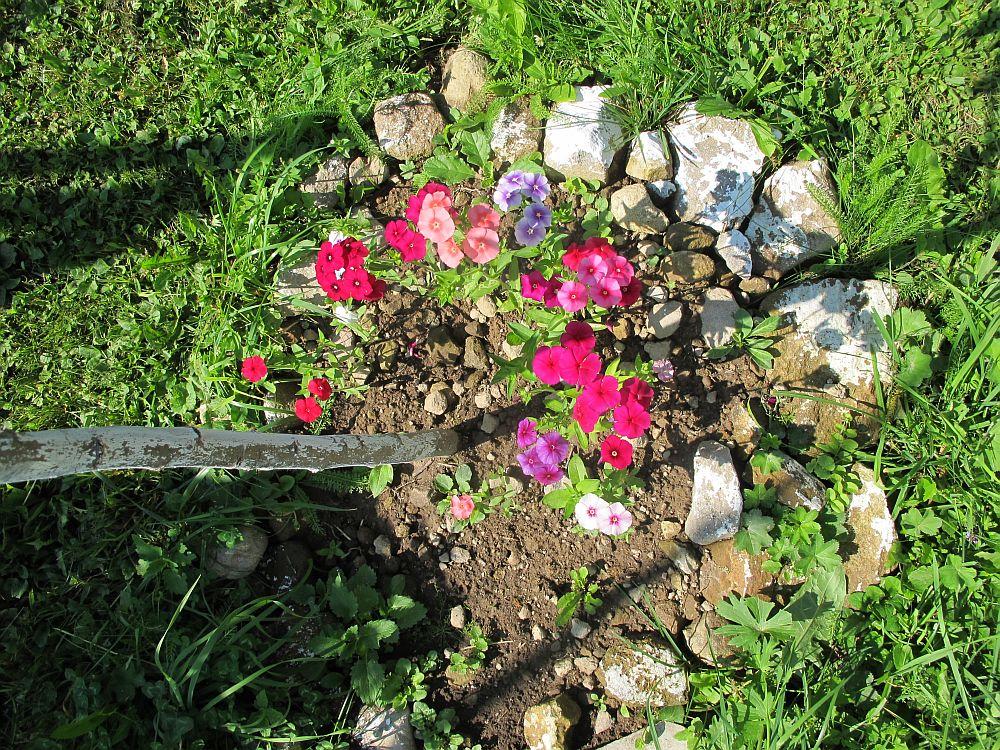 adelaparvu.com despre gradina la munte, gradina cu flori si legume (18)