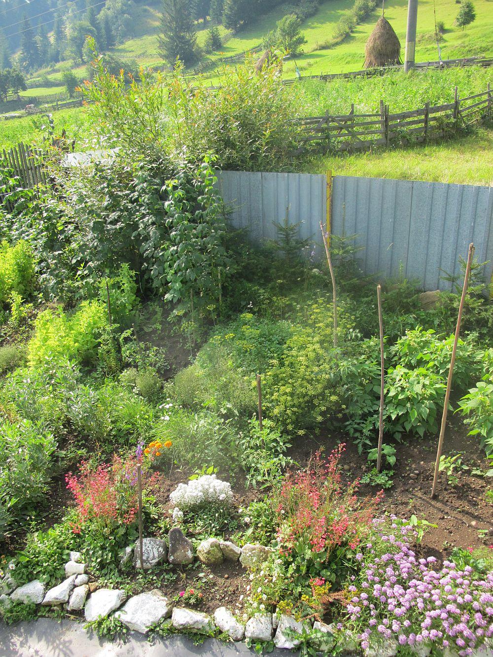 adelaparvu.com despre gradina la munte, gradina cu flori si legume (20)