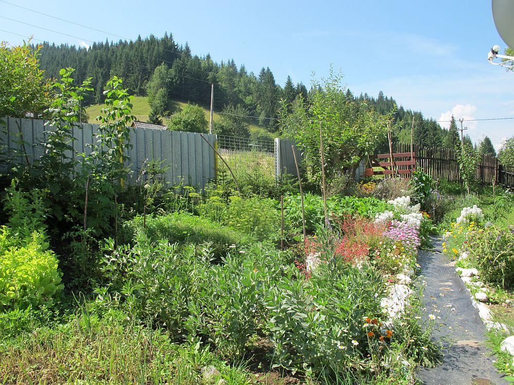 adelaparvu.com despre gradina la munte, gradina cu flori si legume (5)