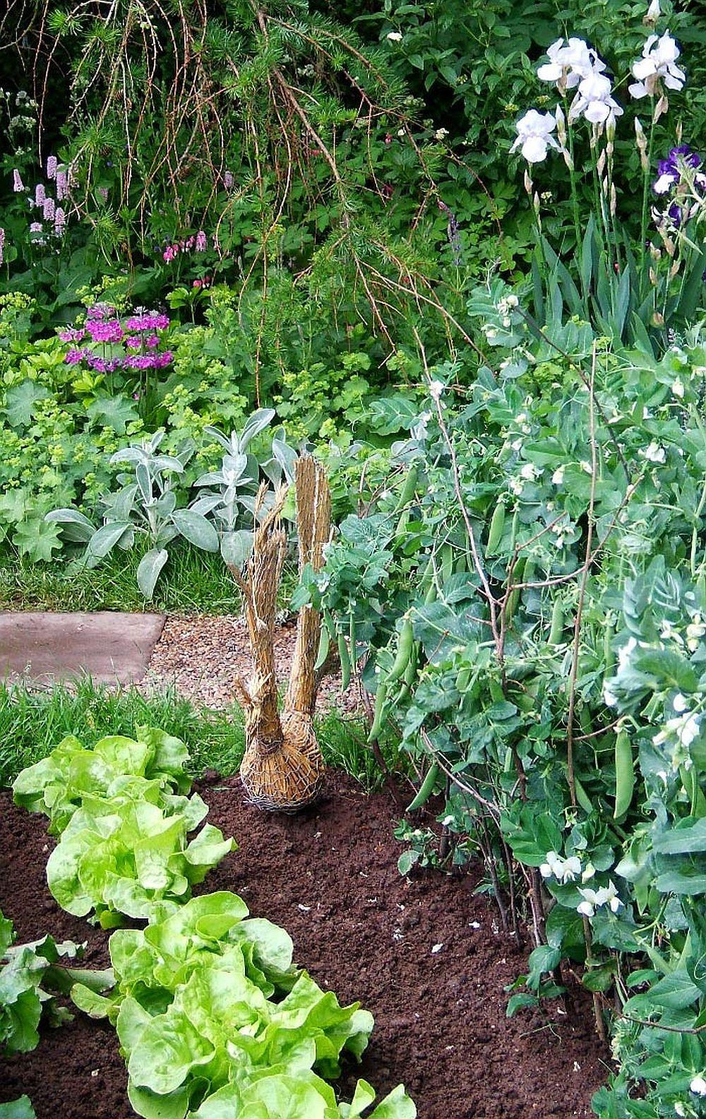 adelaparvu.com despre gradina rustica englezeasca, gradina Anglia, gradina Chelsea Pensioners Garden, designer peisagist Julian Dowle, Foto blog MooseysCountryGarden (23)