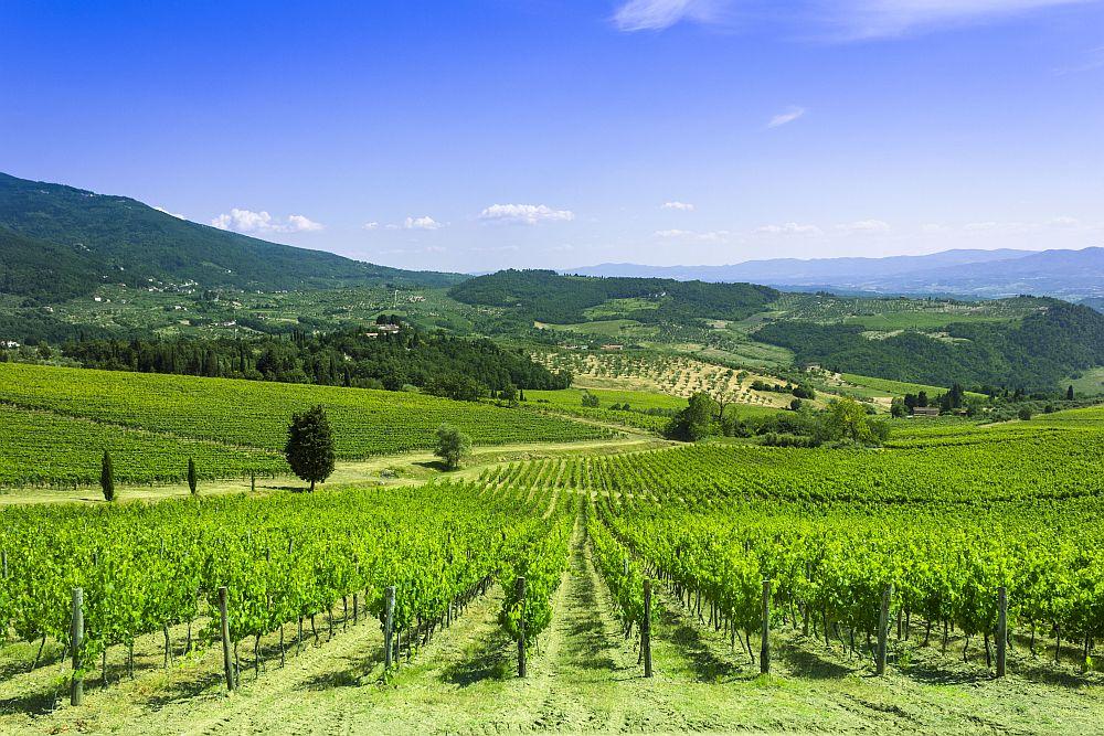 adelaparvu.com despre stilul Toscan, peisaje din Toscana, peisaje toscane (2)