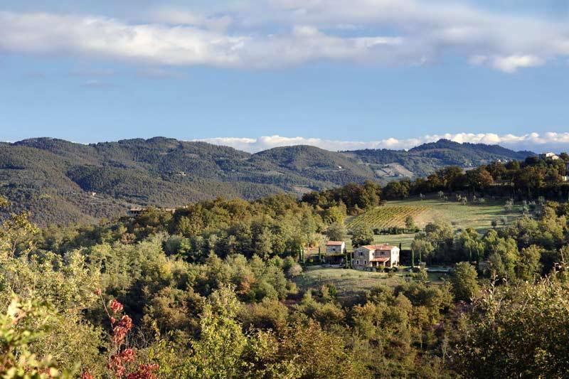 adelaparvu.com despre Casa del Leone, Domeniul Castello di Reschio, design Benedikt Bolza (2)