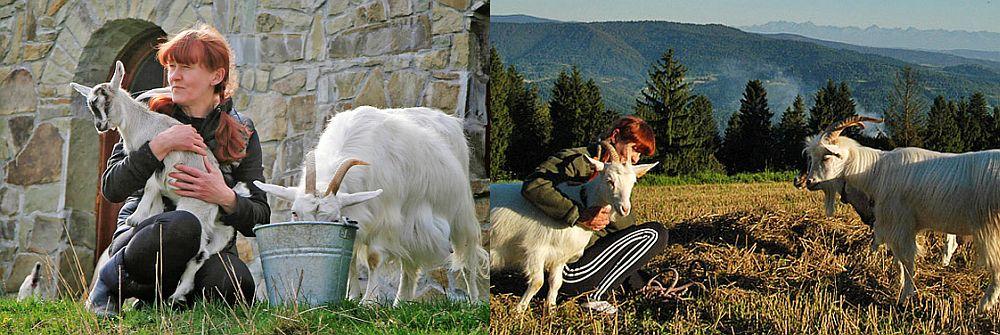 adelaparvu.com despre Jola care vrea sa salveze caprele carpatine (2)