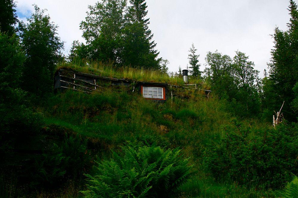 adelaparvu.com despre cabana de munte cu acoperis verde construita de studentii NTNU, cabana Holvasgamma Norvegia (2)