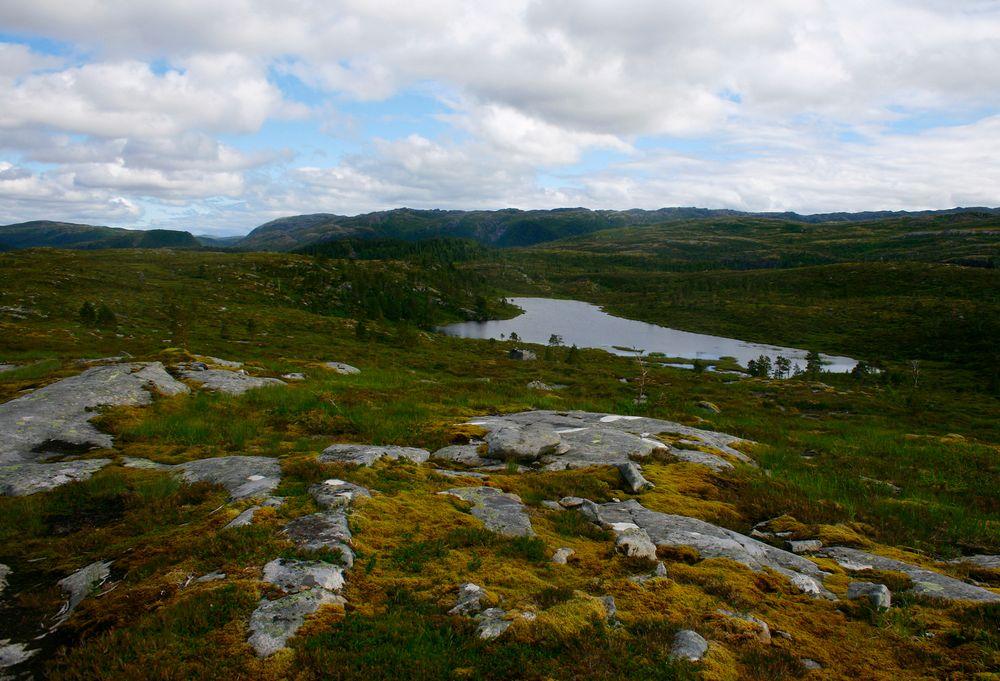 adelaparvu.com despre cabana de munte cu acoperis verde construita de studentii NTNU, cabana Holvasgamma Norvegia (3)