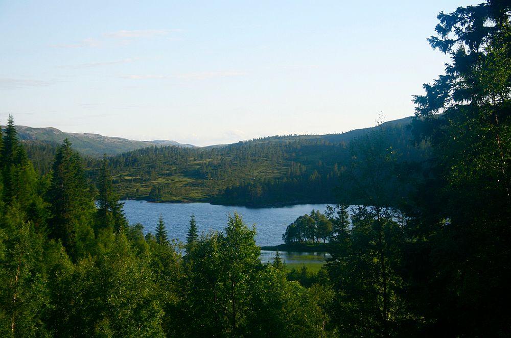 adelaparvu.com despre cabana de munte cu acoperis verde construita de studentii NTNU, cabana Holvasgamma Norvegia (4)