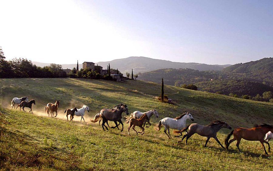 adelaparvu.com despre domeniul Castello di Reschio, vacanta in Italia, Umbria (1)