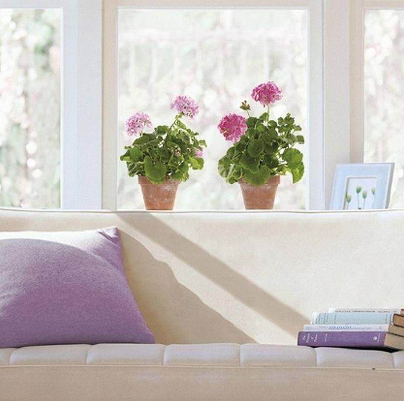 adelaparvu.com despre stickere pentru geam, deco-perete.ro, Foto Arbex Art Decor (36)