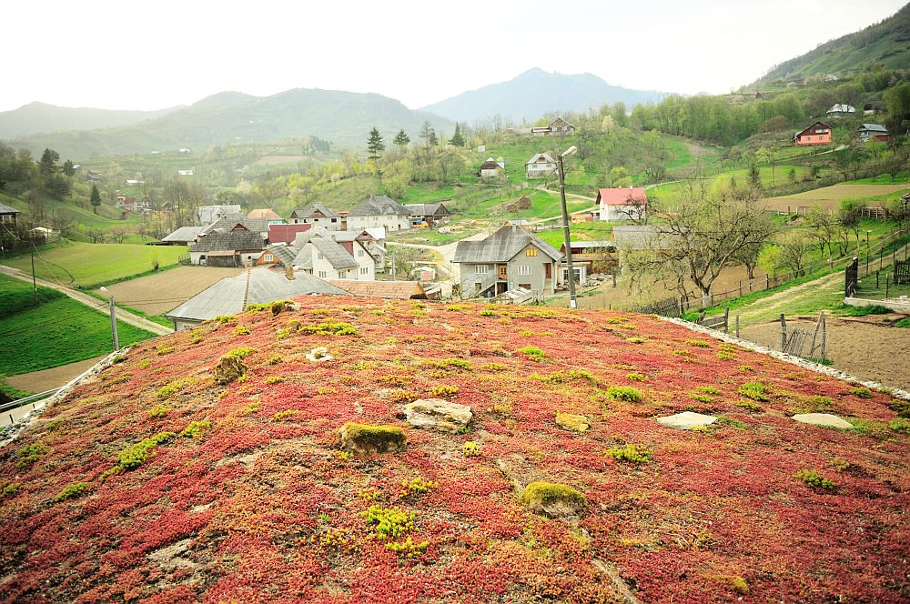 adelaparvu.com despre casa din baloti de paie Popasul Verde, Sangeorz Bai, Romania, proprietar Paul Axinte (37)