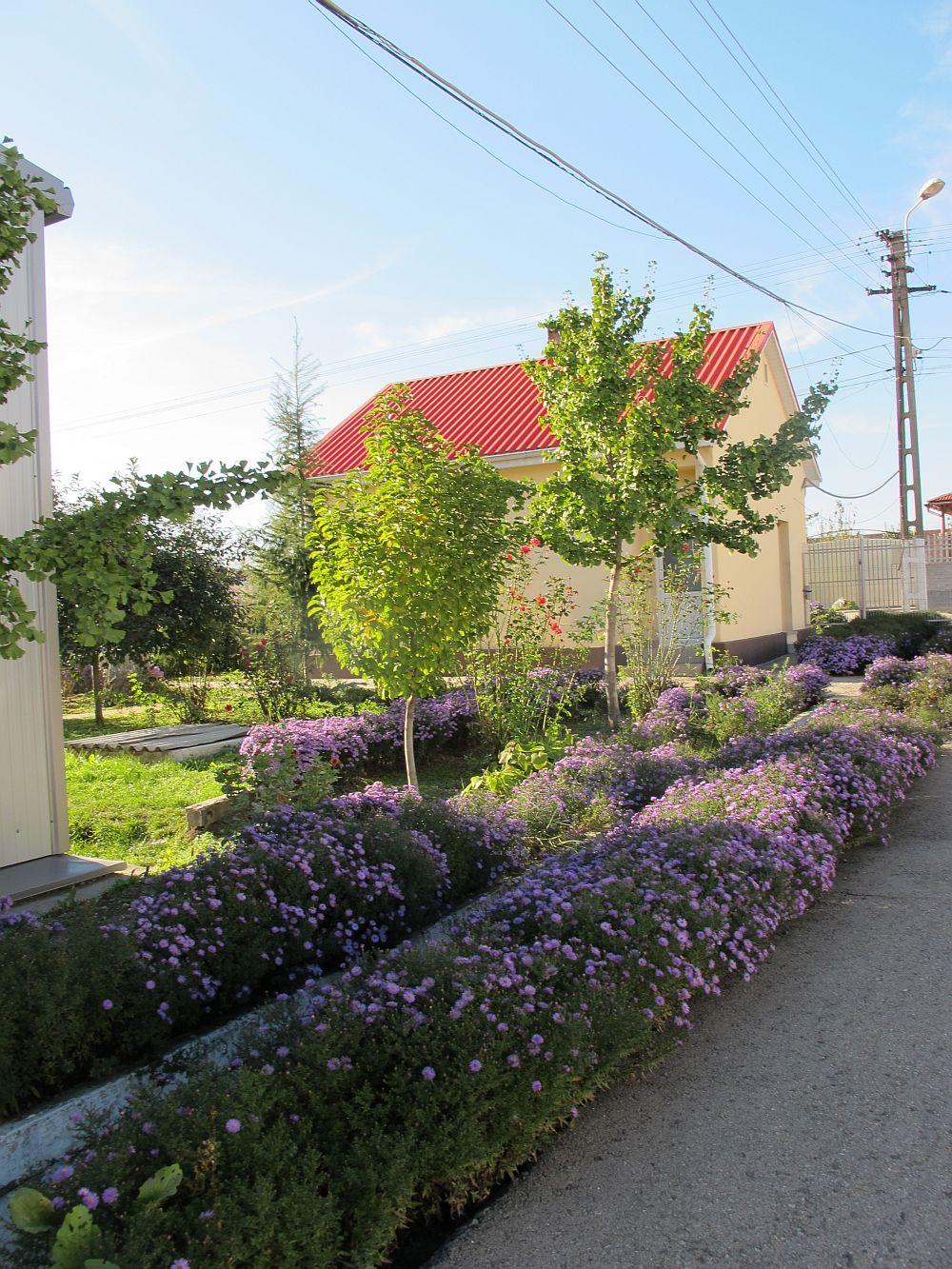 adelaparvu.com despre mobila produsa in Romania, mobila Casa Rusu, Timisoara (16)