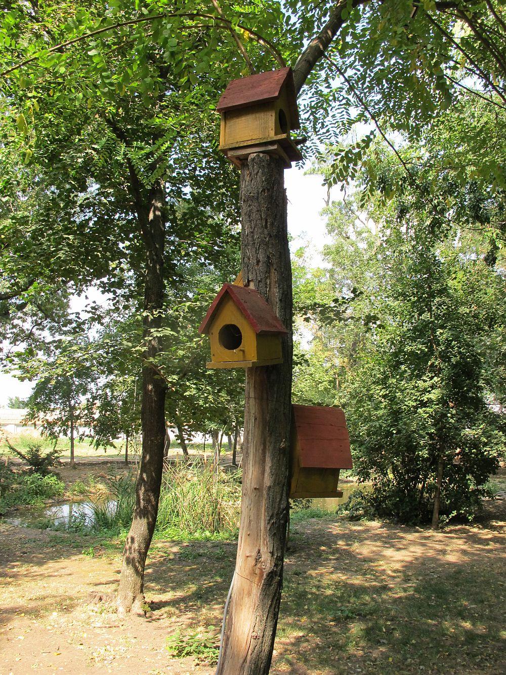 adelaparvu.com despre Domeniu Manasia, Urziceni, Romania (9)