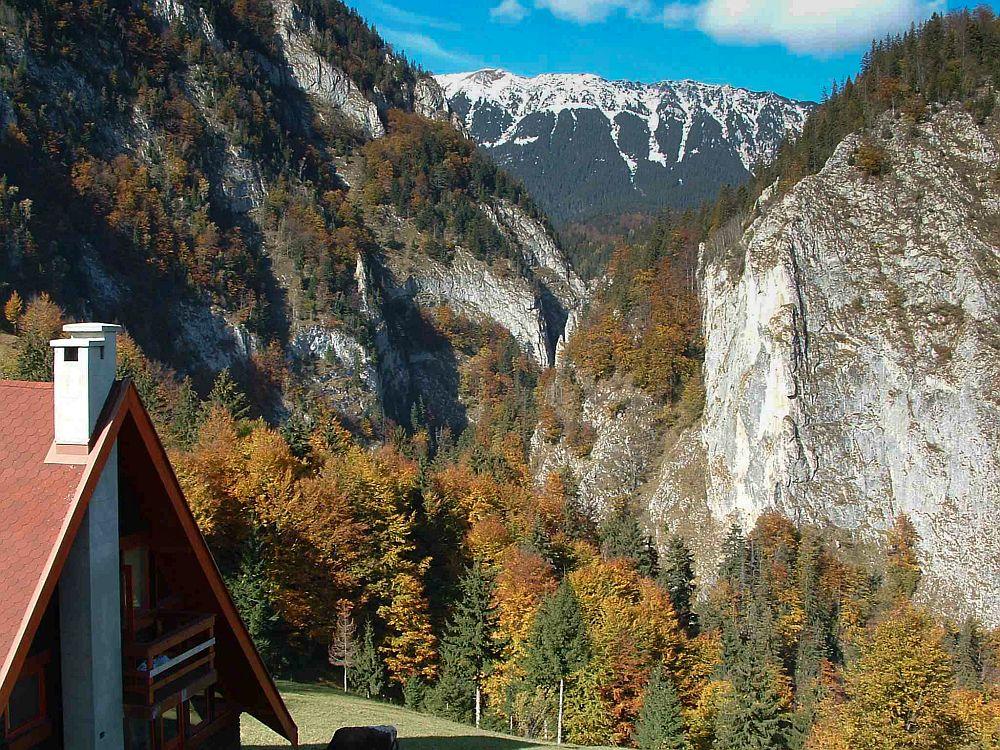 adelaparvu.com despre casa de munte Bucegi, casa din lemn, arh Adina Samoil (1)