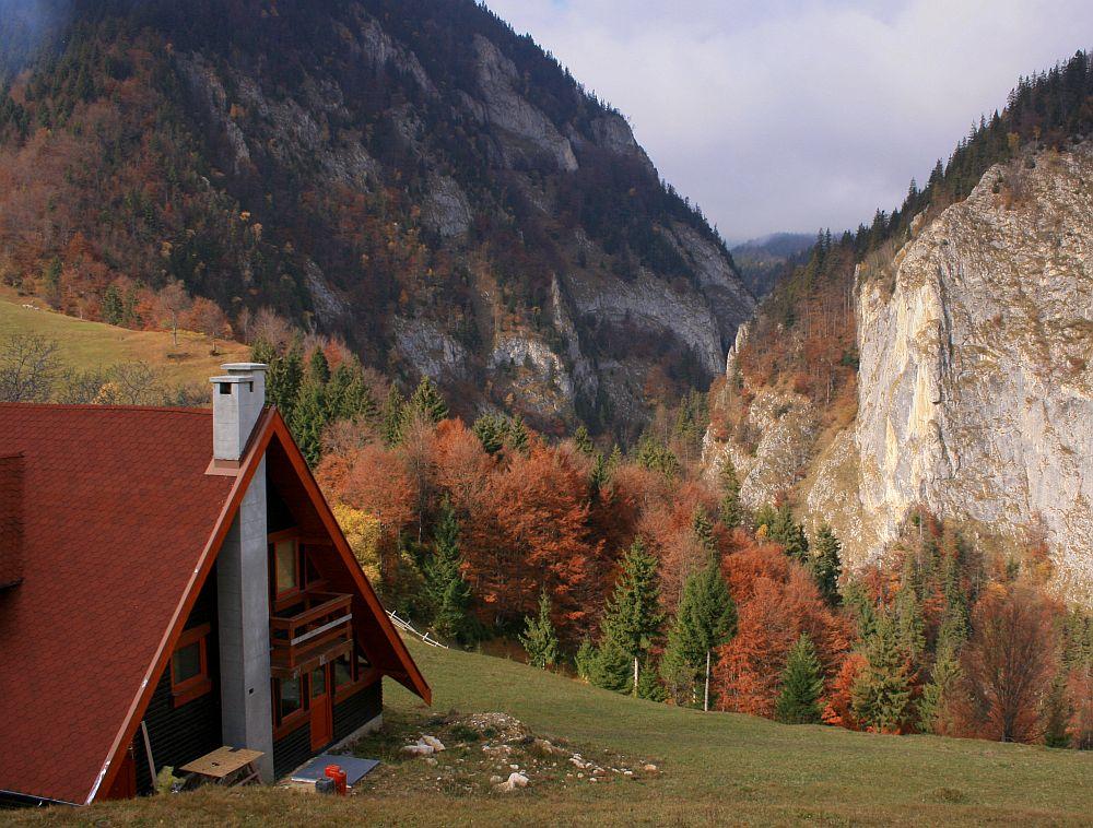 Dorinte efemere - Pagina 57 Adelaparvu.com-despre-casa-de-munte-Bucegi-casa-din-lemn-arh-Adina-Samoil-20