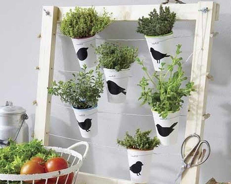 adelaparvu.com despre suport pentru plante aromatice (1)