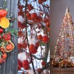 adelaparvu.com despre Marul de Craciun, Text Carli Marian inginer horticol si designer florist (1)