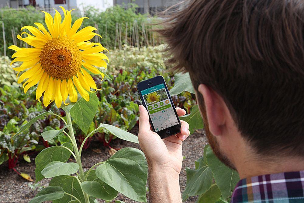 adelaparvu.com despre Parrot Flower Power, text Carli Marian (2)