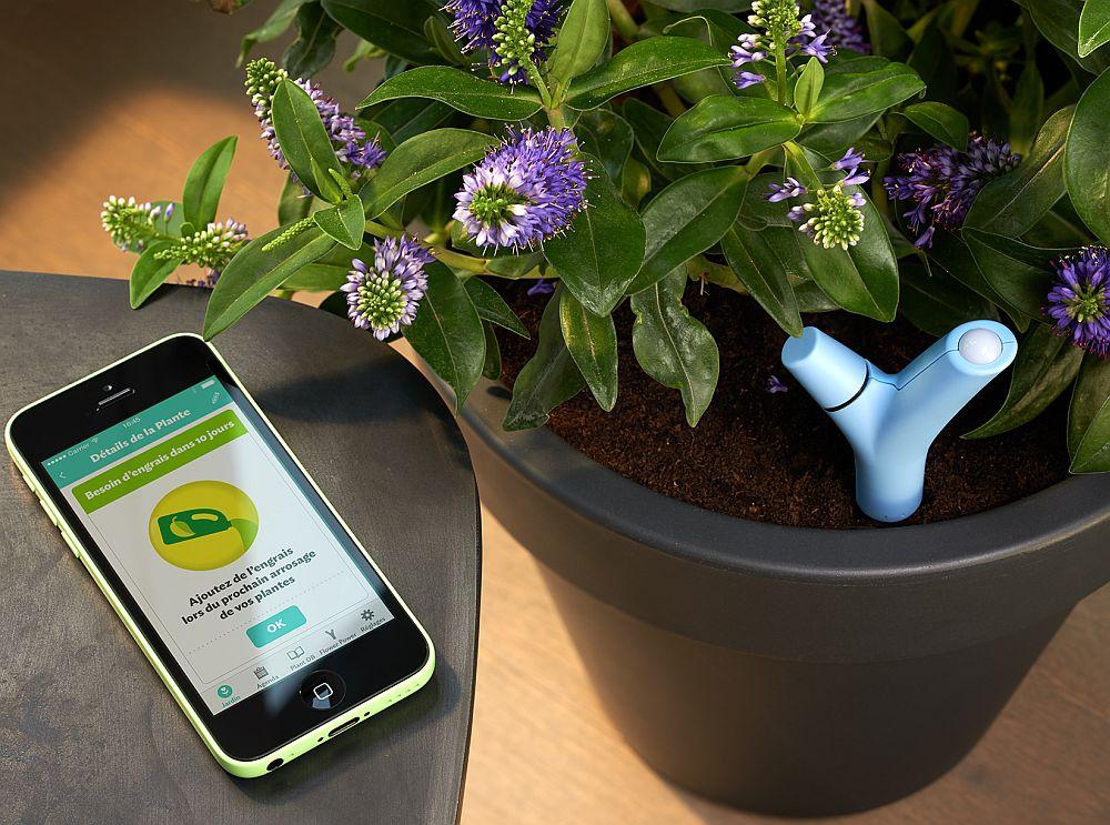 adelaparvu.com despre Parrot Flower Power, text Carli Marian (8)