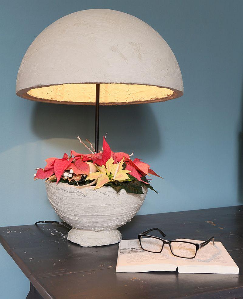 adelaparvu.com despre sfaturi pentru Steaua Crăciunului, Euphorbia pulcherrima, Foto Floradania, Text Carli Marian (2)