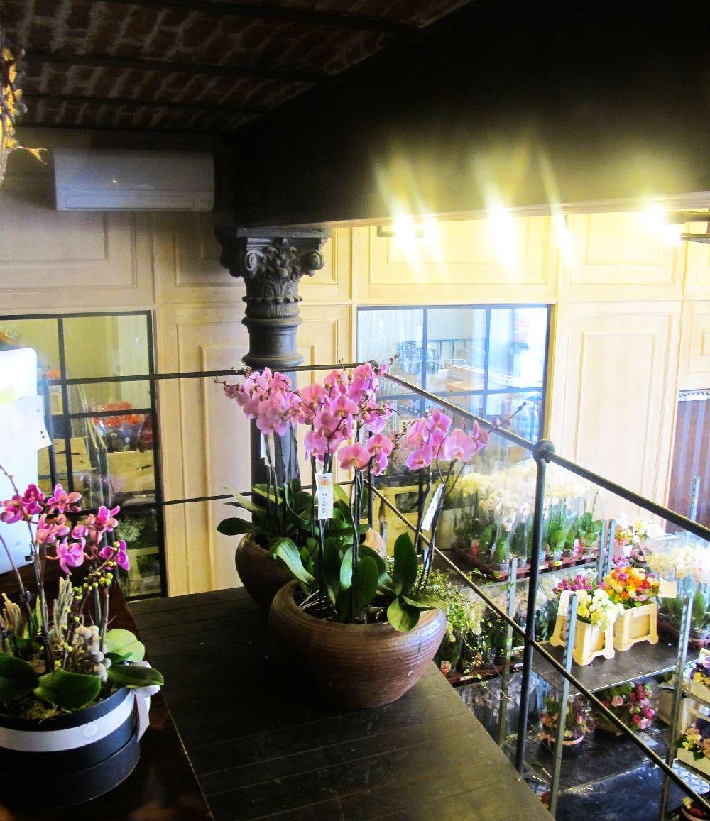 adelaparvu.com despre atelierul designerului florist Nicu Bocancea, Foraria Iris, design interior Pascal Delmotte (33)