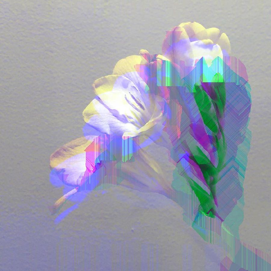 adelaparvu.com despre expozitia Aflora, artist Cornel Lazia (3)