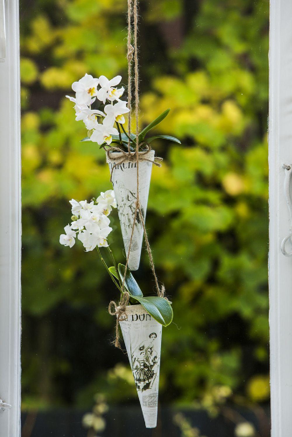 adelaparvu.com despre ingrijirea orhideei dupa ce se ofilesc florile, text Carli Marian, Foto Floradania (8)