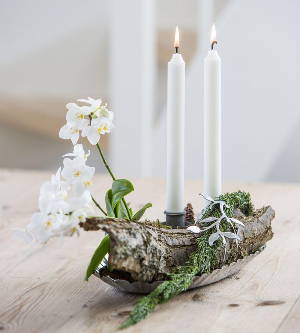 adelaparvu.com despre ingrijirea orhideei dupa ce se ofilesc florile, text Carli Marian, Foto Floradania (9)