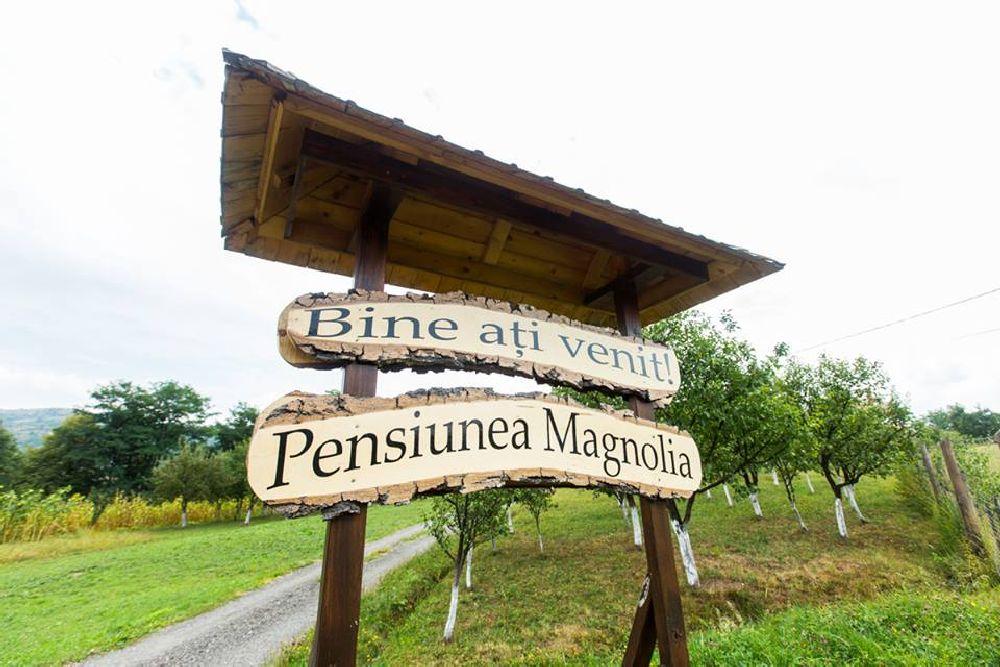 adelaparvu.com despre pensiunea Magnolia, Viseul de Sus, Maramures, Romania (7)
