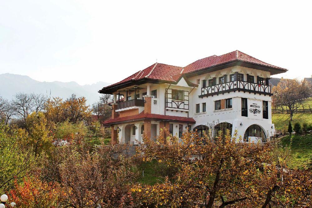 adelaparvu.com despre Conacul Bratescu, design interior Marinela Filip, arhitectura Gabriel Henegar   (2)
