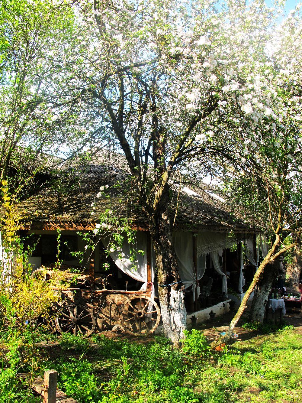 adelaparvu.com despre casa Ioanei Craciunescu, casa taraneasca romaneasca (112)