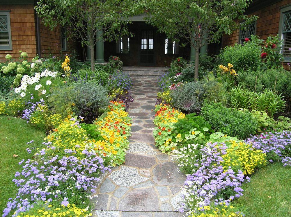 Ageratum in gradina, Foto Heidi s Lifestyle Gardens