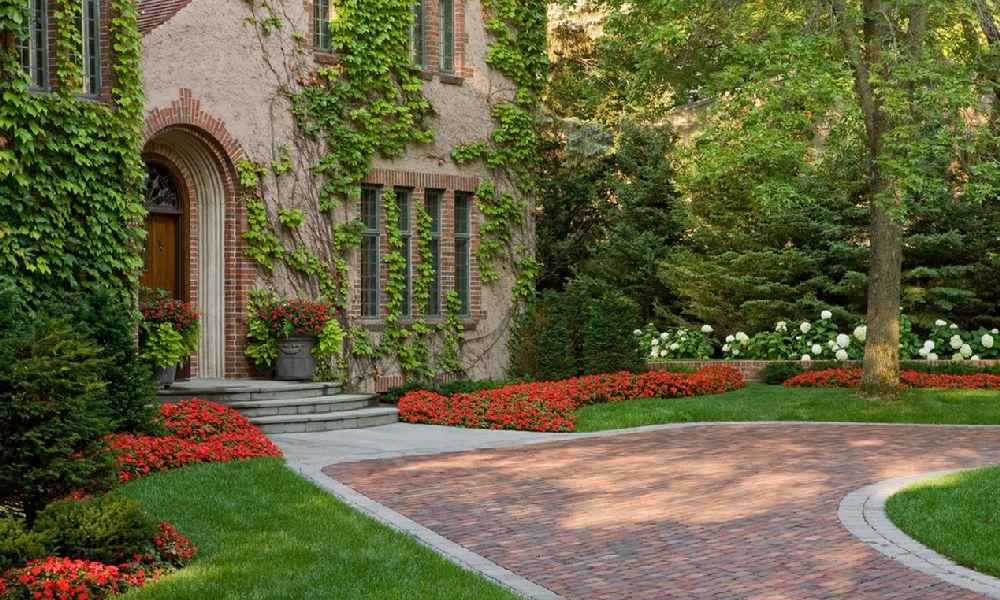Begonia in gradina, Foto Windsor Companies