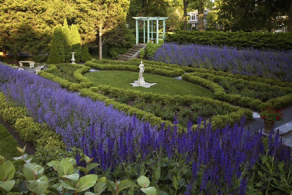 Salvia in gradina, Foto Schmechtig Landscapes
