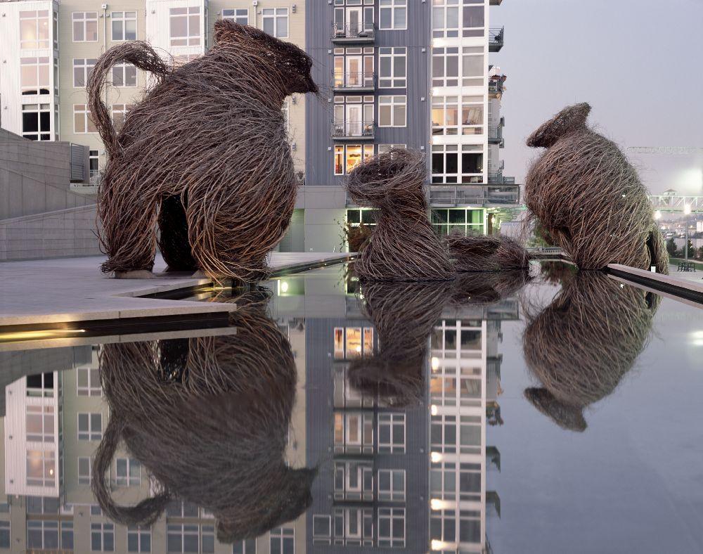 artist Patrick Dougherty, lucrare Call of the Wild
