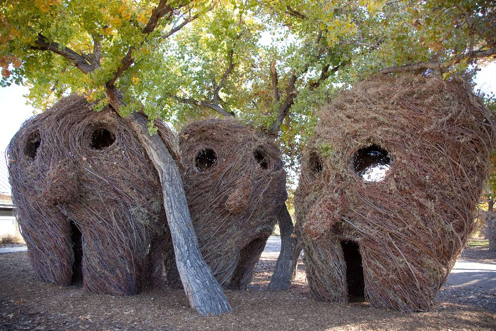 artist Patrick Dougherty, lucrare Heres Looking At You