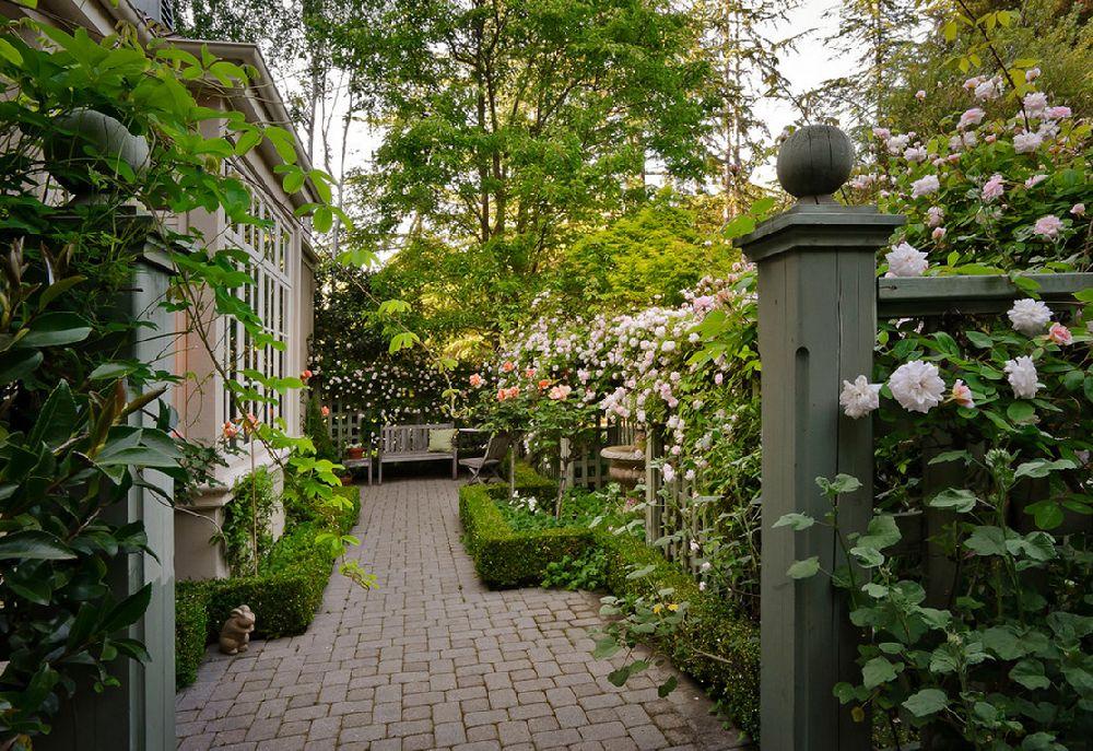 adelaparvu.com despre 5 sfaturi pentru trandafiri cataratori, Text Carli Marian, Foto Dennis Mayer, Photographer