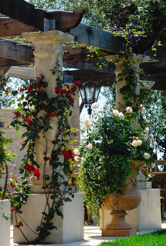 adelaparvu.com despre 5 sfaturi pentru trandafiri cataratori, Text Carli Marian, Foto Grace Design Associates