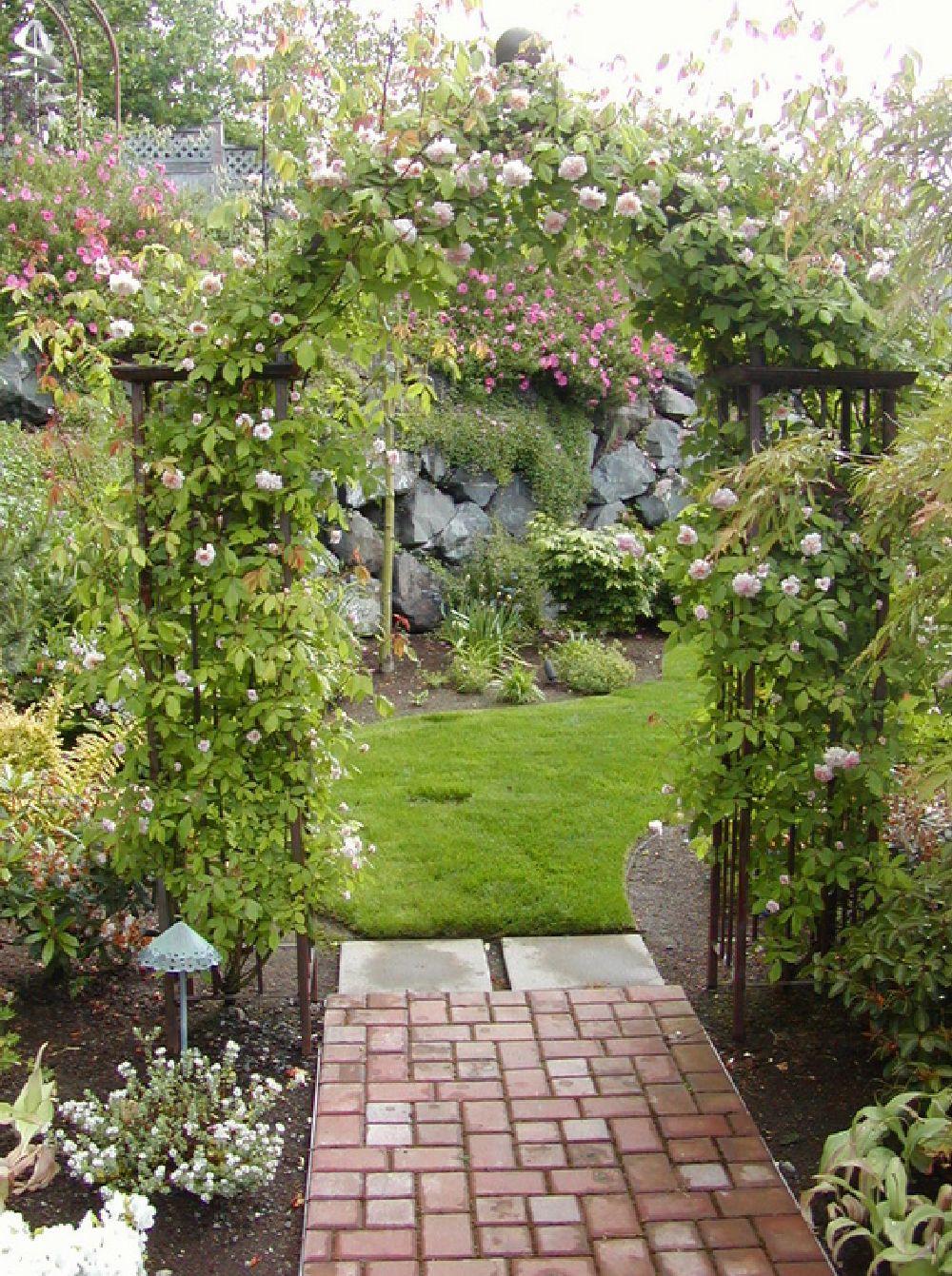 adelaparvu.com despre 5 sfaturi pentru trandafiri cataratori, Text Carli Marian, Foto J P Landscape Service