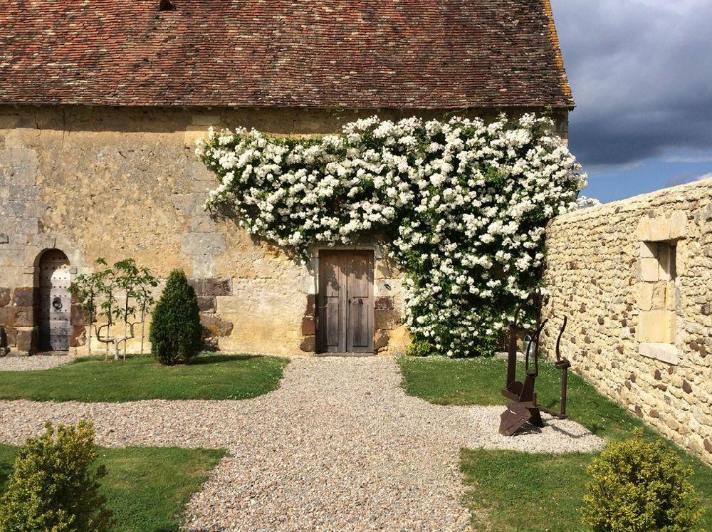 adelaparvu.com despre 5 sfaturi pentru trandafiri cataratori, Text Carli Marian, Foto Philippe DUBREUIL Jardiniste