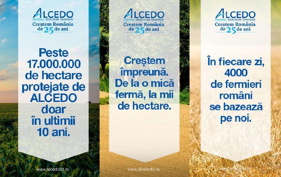 adelaparvu.com despre Alcedo (10)