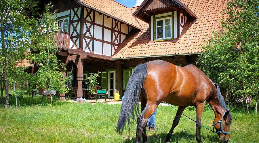 adelaparvu.com despre casa din lemn, csa si pensiune Polonia, Kolonia Mazurska Mierki (6)