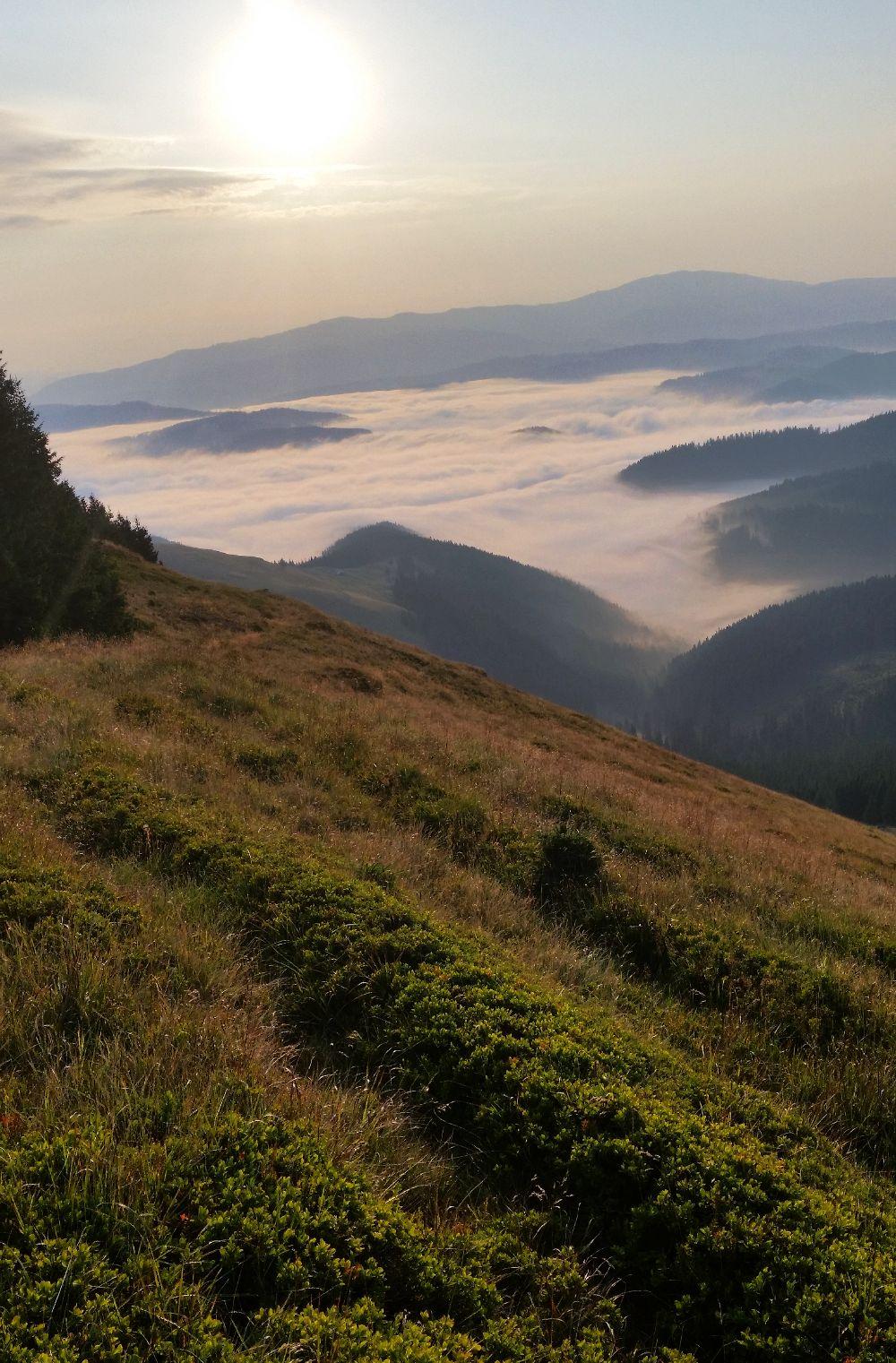 adelaparvu.com despre peisaje din Muntii Suhardului, Ciocanesti, Bucovina, Romania, Foto Adela Parvu (21)