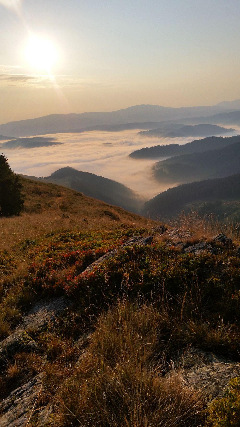 adelaparvu.com despre peisaje din Muntii Suhardului, Ciocanesti, Bucovina, Romania, Foto Adela Parvu (23)