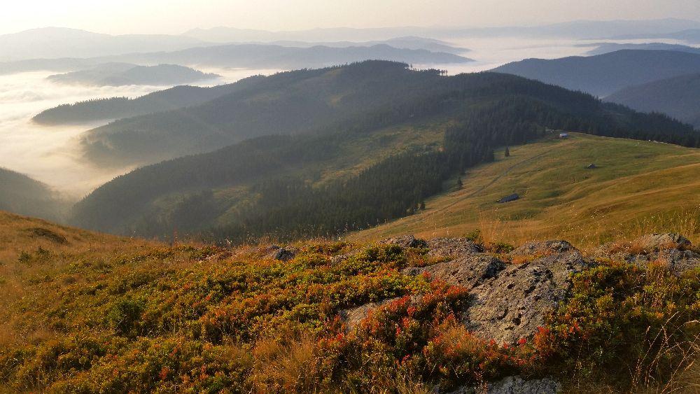 adelaparvu.com despre peisaje din Muntii Suhardului, Ciocanesti, Bucovina, Romania, Foto Adela Parvu (24)