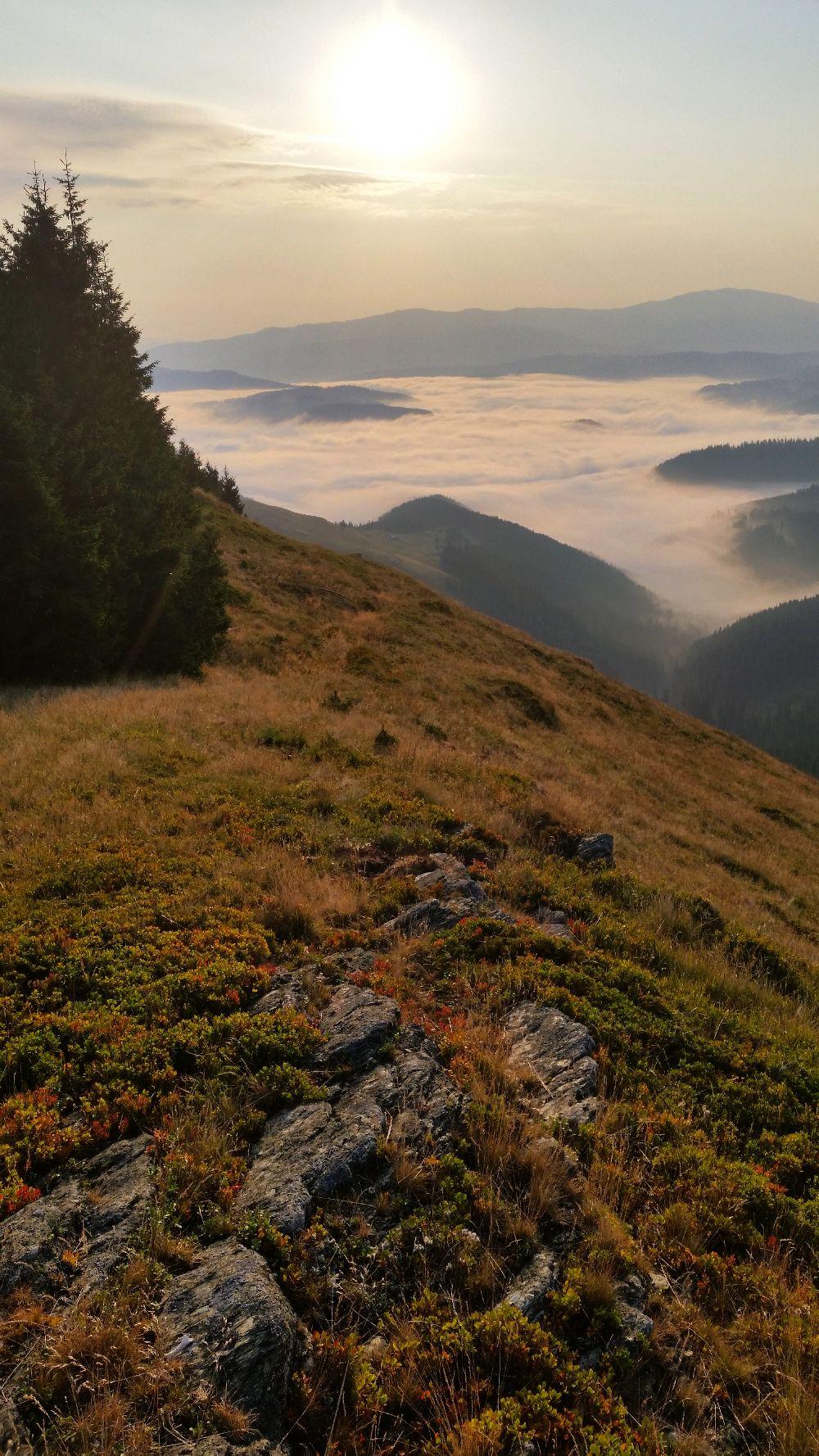 adelaparvu.com despre peisaje din Muntii Suhardului, Ciocanesti, Bucovina, Romania, Foto Adela Parvu (25)