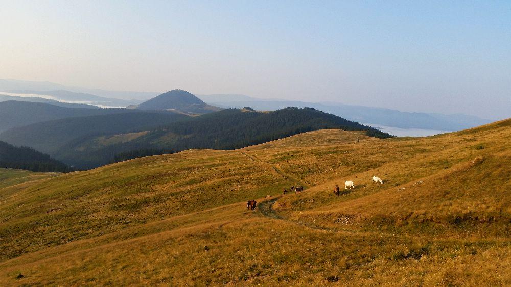 adelaparvu.com despre peisaje din Muntii Suhardului, Ciocanesti, Bucovina, Romania, Foto Adela Parvu (26)