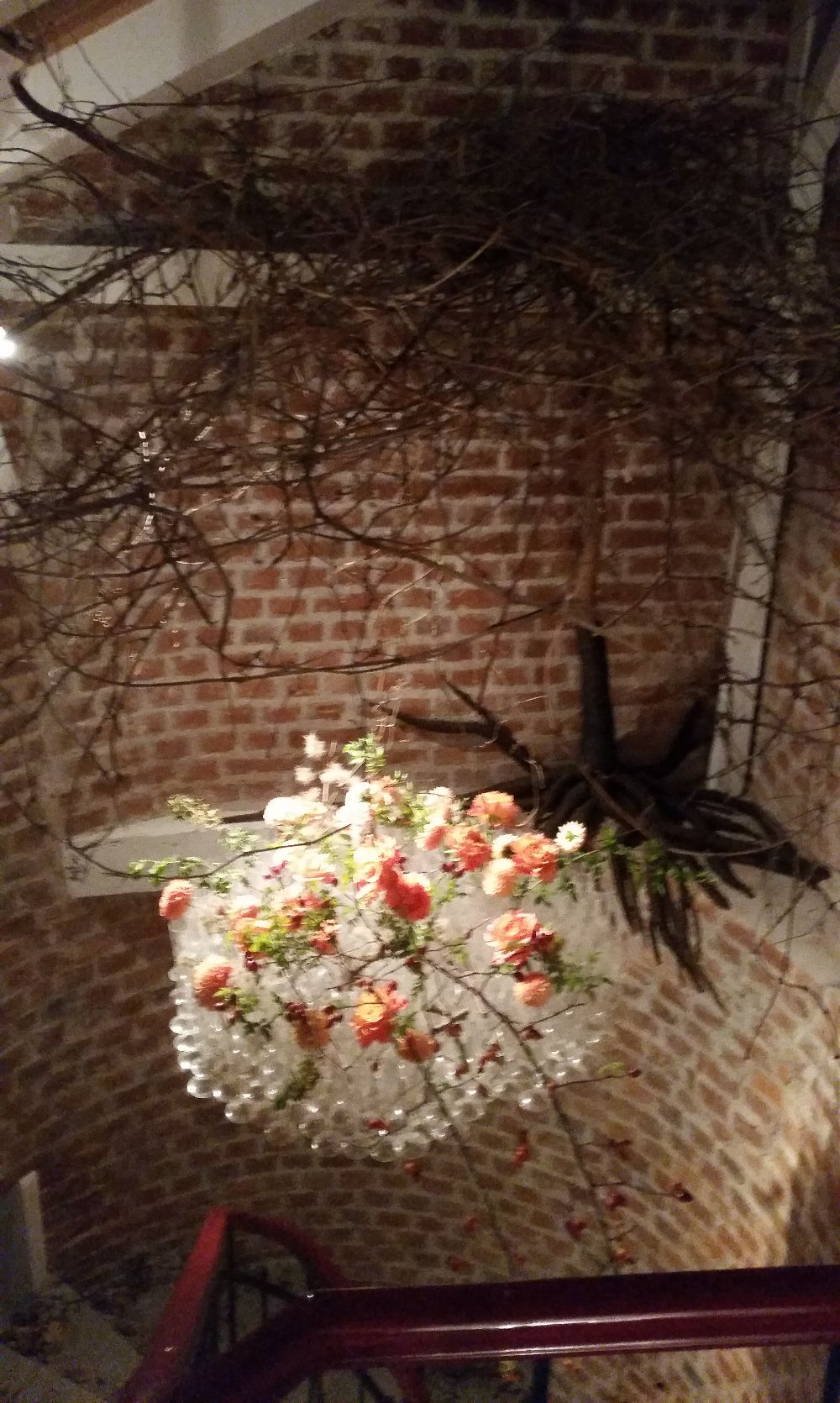 adelaparvu.com despre 45 de ani aniversare Floraria Iris, design floral Nicu Bocancea (21)