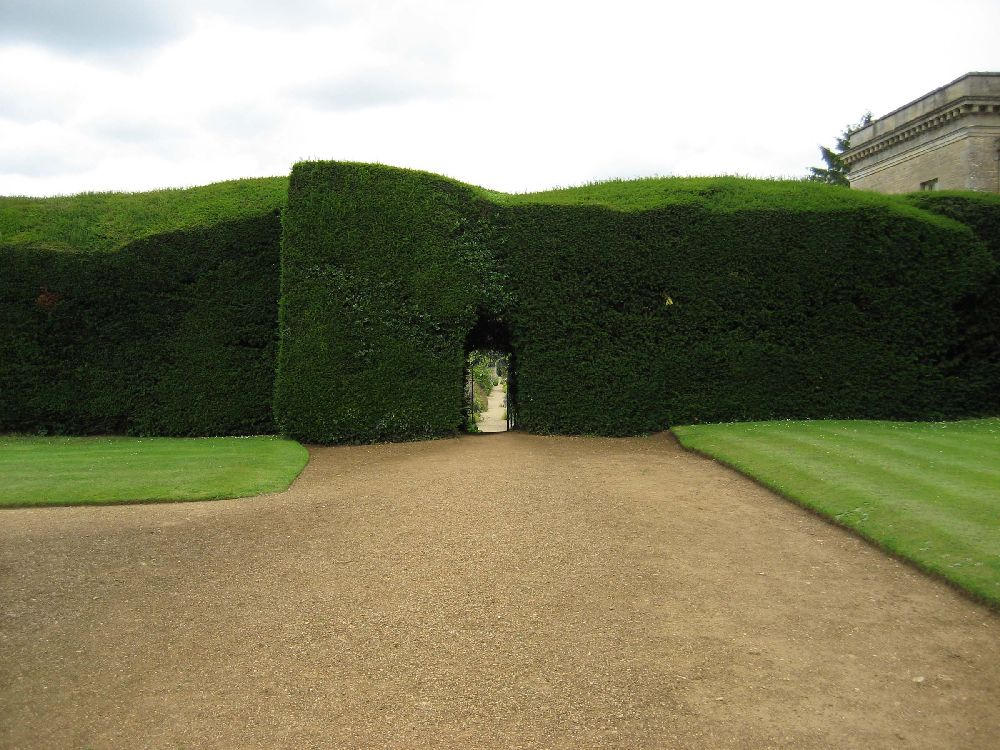Gard din Green Hedge, Foto englishlandscapegarden.wordpress.com
