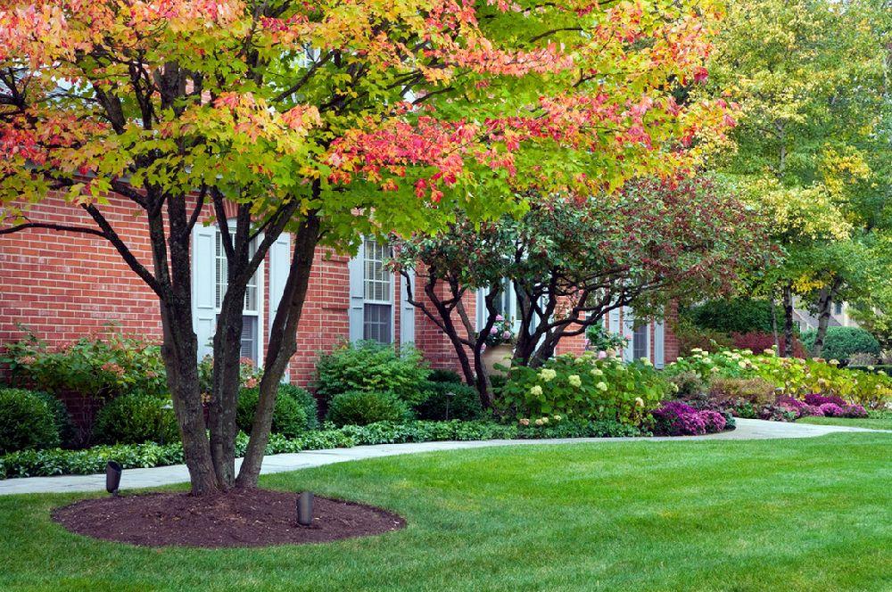 adelaparvu.com despre lucrari pentru gazon toamna, text Carli Marian, Foto NLH Landscape Architects  (1)