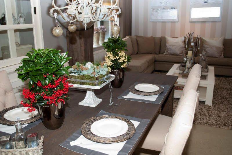 adelaparvu.com despre Ardisia, planta care face fructe de Craciun, Text Carli Marian, Foto Ardisia.com Foto (6)