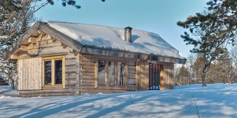 adelaparvu.com despre casa mica de vacanta, 11 mp, arhitectura Bendik Manum si arh Annelise Bjerkan, Foto Pasi Aalto (22)